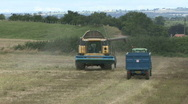 Stock Video Footage of New Holland combine harvester starts to unload Rape Seed