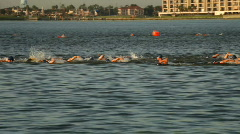 Mens swimming triathalon Stock Footage