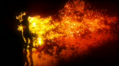 Sexy girl dancing with fire - stock footage