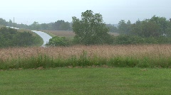 Field in Maine in rain with thunder Stock Footage