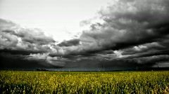 Storm rolls over grain field Stock Footage