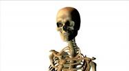 Human skull rotating, loopable Stock Footage