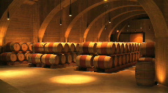 Wine Barrels Stock Footage