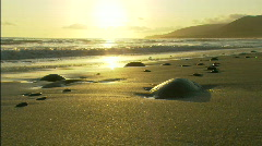 Santa Barbara Beach scattered rocks Stock Footage