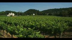 Napa Valley Stock Footage