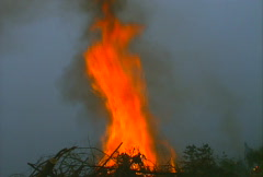 Mt. Tam Control Burn 05 Stock Footage