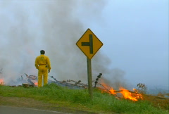Mt. Tam Control Burn 10 Stock Footage
