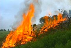 Mt. Tam Control Burn 13 Stock Footage