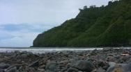 Stock Video Footage of Rocky Jungle Beach 02