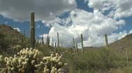 Desert Landscape Time Lapse Stock Footage