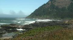 Oregon coast Stock Footage