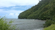 Jungle Cove Maui Stock Footage