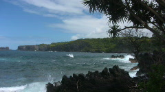 Jungle Beach Cove Maui 02 Stock Footage