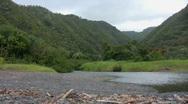 Jungle River Mouth Maui 01 Stock Footage