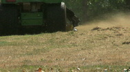 Riding Mower Cutting Tall Grass Stock Footage