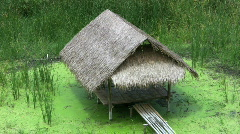 Bamboo Grass Hut Over A Swamp Stock Footage