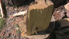 Wood split 4 Stock Footage