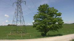 Electrical pylon vs. big green tree. - stock footage