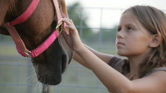 Girl brushing her horse Stock Footage