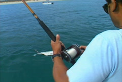 Baja Fishing Roosterfish 02 - stock footage