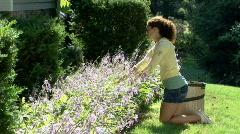 Gardening 262 Stock Footage