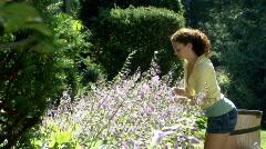 Gardening 263 Stock Footage