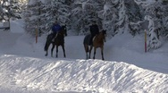 Stock Video Footage of Horseriders In Snow Scenery