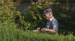 Oldtimer clipping the hedgerow Stock Footage