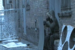 Homeless Poor Drunk Bumb In an Alley - stock footage
