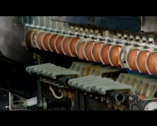 Egg Processing Plant - Close Up Stock Footage