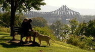 Couple with Dog in Park 294 Stock Footage