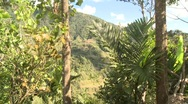 Stock Video Footage of Banaue Ifugao ceremonial rites 9