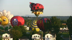 Colourful Hot Air Balloons Taking Off Stock Footage