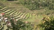 Batad rice terraces 18 Stock Footage
