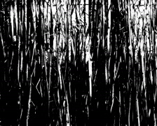 Grungy-Grass-loop - stock footage