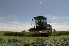 Harvest 12   - stock footage