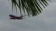 Stock Video Footage of Landing Airliner Flys Pass Trees