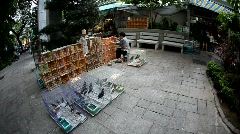 Hong Kong bird market Stock Footage
