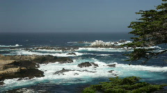Monterey Cypress and Pacific waves Stock Footage