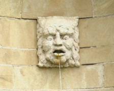 Stone Face Fountain PAL Stock Footage