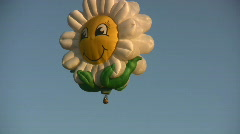 Daisy Balloon Stock Footage