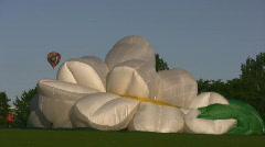 Sunflower Balloon Landed Stock Footage