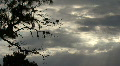Rays Of Sunlight In The Clouds And Trees Footage