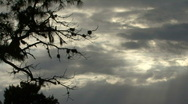 Stock Video Footage of Rays Of Sunlight In The Clouds And Trees