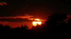 Sunset and Trees - stock footage