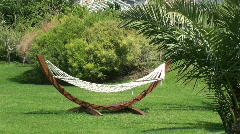 Hammock in a garden, empty Stock Footage