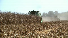 Two combines on one row Stock Footage