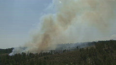 P00598 Smoke from Forest Fire from Distance Stock Footage