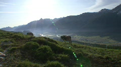 Panorama View Over The Engadin Valley From The Alp Stock Footage