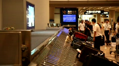 Working security dog in airport Stock Footage